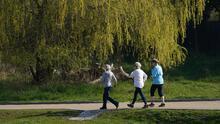 Nuevo estudio sobre el comportamiento del metabolismo en el cuerpo humano: experta analiza