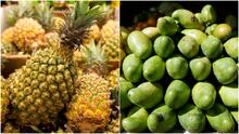 Con productos traídos desde República Dominicana, se realizará una feria agropecuaria en El Bronx