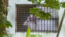 Ricardo Martinelli fue internado en la misma celda de Noriega, a cuatro días de su extradición