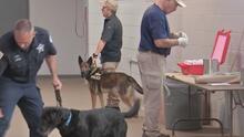 ATF someterá a unos 20 equipos caninos a un examen sobre detección de explosivos