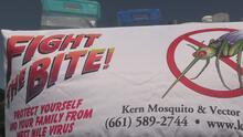 Medidas para prevenir y mitigar la propagación de mosquitos