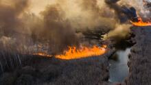 Un incendio forestal avanza en la zona de exclusión de Chernóbil y hay dos versiones sobre lo que está pasando allí