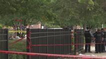 Una persona muerta y dos heridas es el saldo de un tiroteo en Wentworth Gardens: lo que se sabe del caso