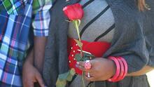 Rosas colombianas, el mejor aliado de Cupido para celebrar San Valentín