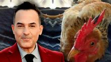 """Ay Gertrudis, discúlpame"": Carlitos Calderón pensaba que atropelló a una gallina, pero descubrió que era 'Claudio'"