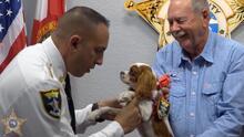 Cachorro rescatado de las fauces de un caimán se convierte en 'detective patrullero'