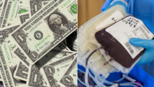 Tarjetas de regalo de $5 para Amazon a cambio de donaciones de sangre. La Cruz Roja busca donantes
